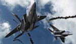 F-15 Eagles Foxing Up MiGs