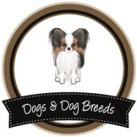 Dogs & Dog Breeds
