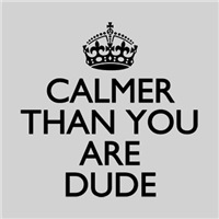 Calmer than you Dude