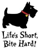 LIFE'S SHORT, BITE HARD!