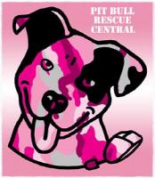 Pink Camo Dog