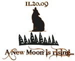 A New Moon Rising