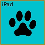 iPad Teal (large)