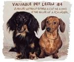 Valuable Pet Lesson #4