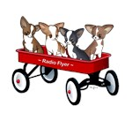 Radio Flyer Chihuahuas