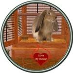 Bunny #2