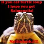 Mr. Turtle says…