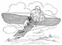 Feline Aviator