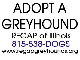 Adopt A Greyhound - REGAP