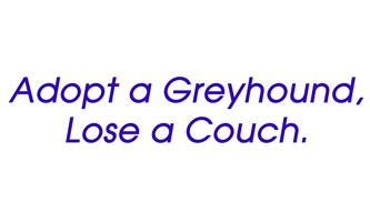 Adopt a Greyhound, Lose a Couch