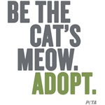 Be The Cat's Meow, Adopt