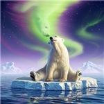 Arctic Kiss