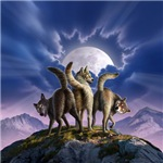 3 Wolves Mooning