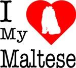 I Love My Maltese