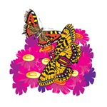 Beautiful Butterfly T-shirts and Gifts