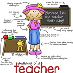 Anatomy of a Teacher