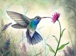 Hummingbird Wildlife Art