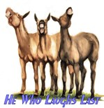 Mules, he who laughs