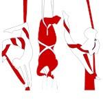 Aerial Silks/Tissue Merchandise