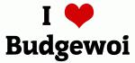 I Love Budgewoi