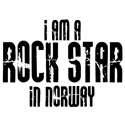 Rock Star In Norway T-shirt
