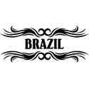 Tribal Brazil