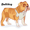 Bulldog T-shirt, Bulldog T-shirts