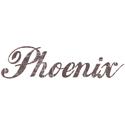 Vintage Phoenix T-shirt