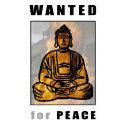Wanted For Peace T-shirt & Gift