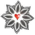 Lotus T-shirt & Gift