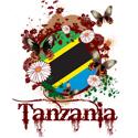 Butterfly Tanzania