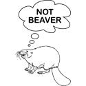 Not Beaver