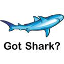 Got Shark