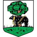 Berwickshire Coat Of Arms