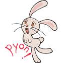 Japanese Rabbit