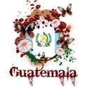 Butterfly Guatemala T-shirt