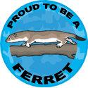 Ferret T-shirt, Ferret T-shirts