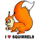 I Love Squirrels