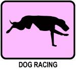 Dog Racing (pink)