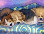 Beagle puppies asleep on sofa