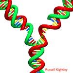 DNA Fork #10