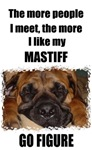 THE MORE I LIKE MY MASTIFF