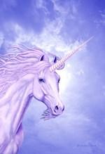 Unicorn & Sky by Marc Brinkerhoff