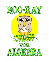 <b>HOO-RAY FOR ALGEBRA</b>