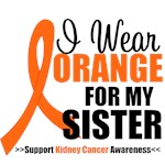 I Wear Orange For My Sister T-Shirts & Gifts