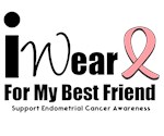 Endometrial Cancer (Best Friend) T-Shirts
