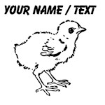 Custom Baby Chick Sketch