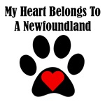 My Heart Belongs To A Newfoundland
