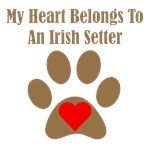 My Heart Belongs To An Irish Setter