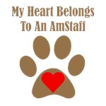 My Heart Belongs To An AmStaff
